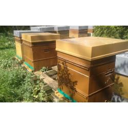 Parrainage de ruche pour...